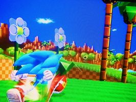Sonic in Green Hill Zone by marioandsonic-14