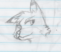 Fox Face Doodle :3 by FoxFever101