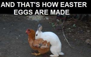 How Easter Eggs Are Made by Candyboy123