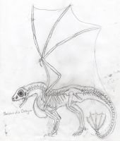 draconian anatomy - sketch by Jathara