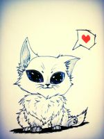Kitty lovers! :3 by Julieesparza155