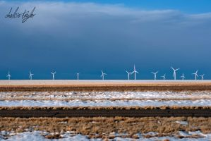 Texas Windmills by cheslah