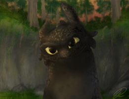 Toothless1 by Ningeko16