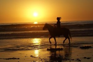 Riding on the beach by badgirlAl