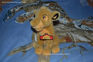 Young sitting Simba with Tags - TLK by MoondragonEismond