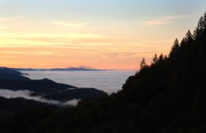 Napa Valley under fog by rebekahlynn-photo