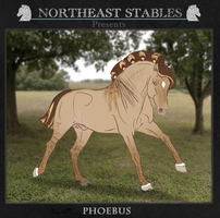 ES Phoebus 1423 by NorthEast-Stables