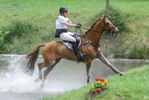 3DE Cross Country Water Obstacle Series XV/5 by LuDa-Stock