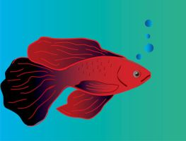 Fishy by vrgraphics