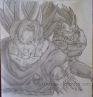 Goku y Vegeta - Dragon Ball Z by RDzone4