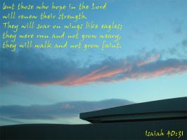 Isaiah 40 31 by laurichg