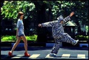 and the zebra said : by TOYIB
