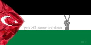 Support Palestine by darKnight-ulan