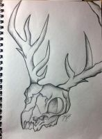 Random deer skull with horrendous quality ayy by viscarla