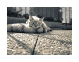 Life is so hard... by octobre-rouge
