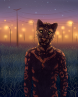 where the city ends by DogeDays