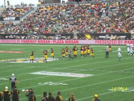Close Up Of Ticats Pre Kickoff  by Musicislove12