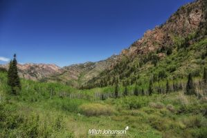 Wasatch Springtime View by mjohanson
