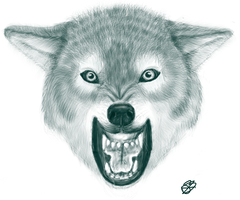 Wolf Head by BoWhatElse