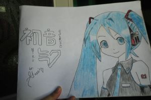 Another Hatsune Miku~ by IceScream99
