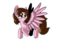 Shinta Pony by FlavouruAnnabelle