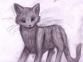 Cat sketch -Style practice-2 by Hawkheart1