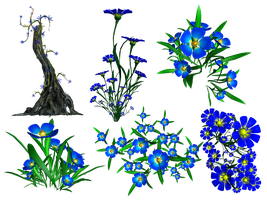 Forget Me Not PNG Stock by Roys-Art