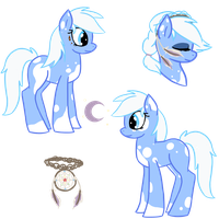Snow Shoe Reference Sheet by Piperwolf201