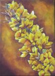 Gorse by clairec666