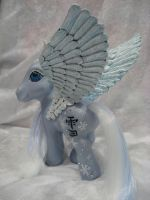 yuki, snow kanji pegasus.. by assassin-kitty