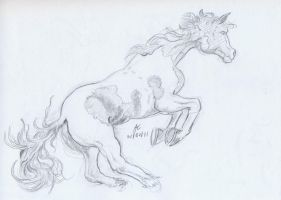 Horse Sketch 2 by Adan-Cricjer