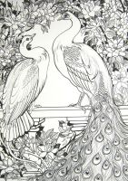 White Peafowl and Roses by HouseofChabrier