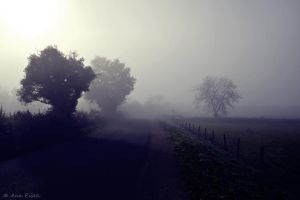 Mist and Shadow by AnaPisek