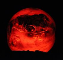 Tree Frog Pumpkin by Catriana-Dreamwing