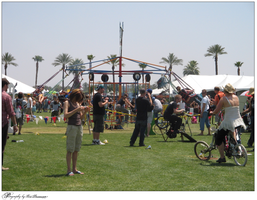 coachella crowd + exhibits by nitrate