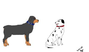 Rottweiler and Dalmation by TallyBaby13