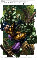 Wolverine vs Hulk by logicfun