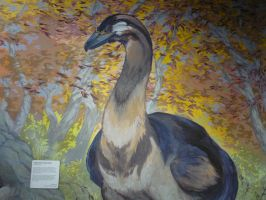 Raptor and the museum of ancient life 85 by Sting-raptor