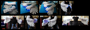 Snowy Owl Wings by CuriousCreatures