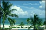 Tropical island by vungtau