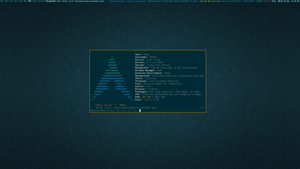 DWM on Archlinux: Solarized (Clean) by w0ng