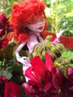 2014 - Operetta and flowers. 4 by Jessi-element