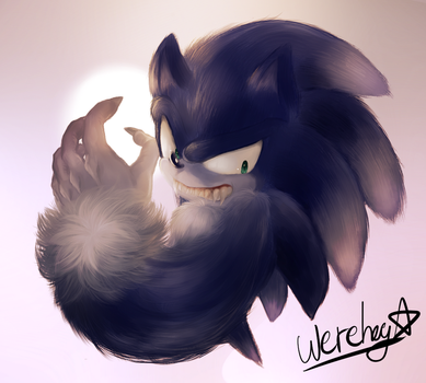 Werehog by Unichrome-uni