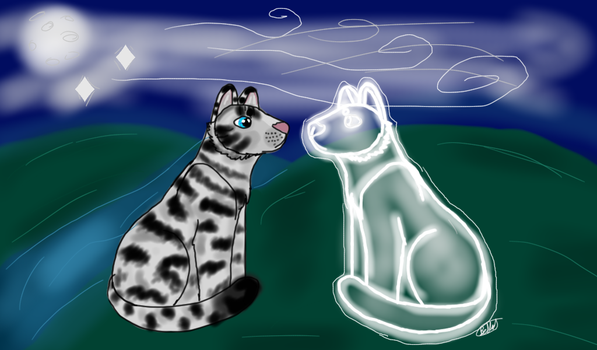 Visit from Starclan by Rainstorm1414