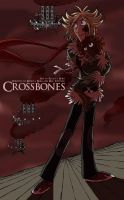 Crossbones Cover by ZiBaricon