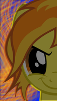Spitfire iPod touch 5th Gen background by tehAgg