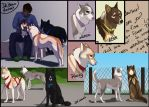 A week in the kennel by Sharaiza