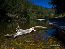 Weathered by FireflyPhotosAust