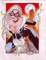 BLACK CAT by RODEL MARTIN (01042014A) by rodelsm21