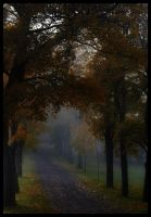 Autum fog by SiimonX